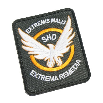 F.F.I. The Division SHD Patch - Type I