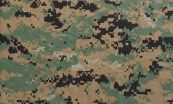 Digital Woodland / MARPAT