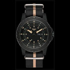 traser P6600 SAND H3 Watch