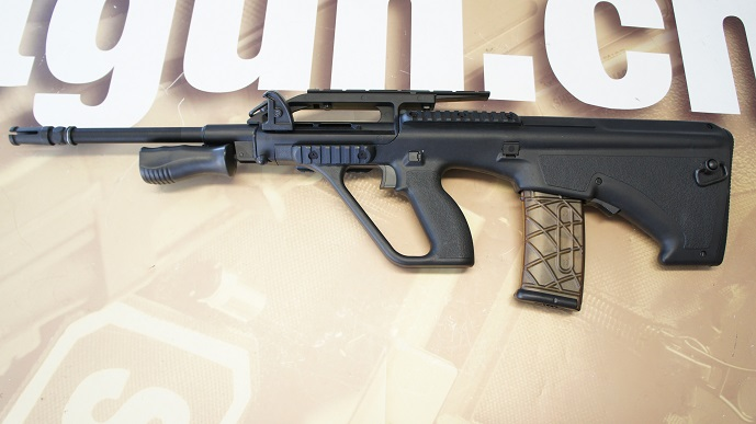 http://www.softair.ch/shop/bilder/ASSAULT_RIFLE/APS/KOMPETITOR/APS_KU901_01.JPG