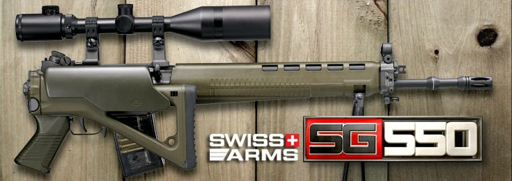 http://www.softair.ch/shop/bilder/ASSAULT_RIFLE/GG/GG_SG550_3.jpg